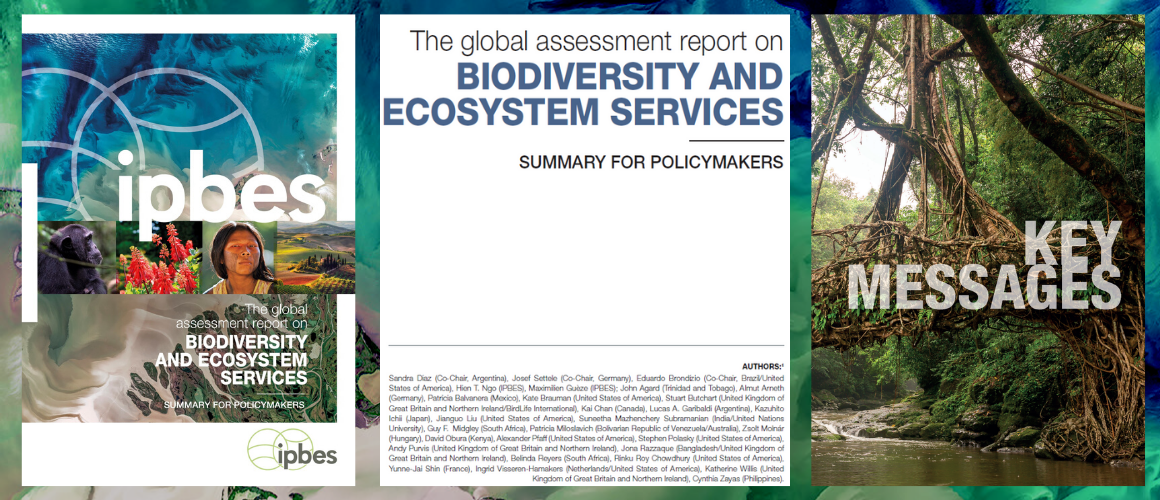 Global Assessment Summary for Policymakers Final Laid-Out Version